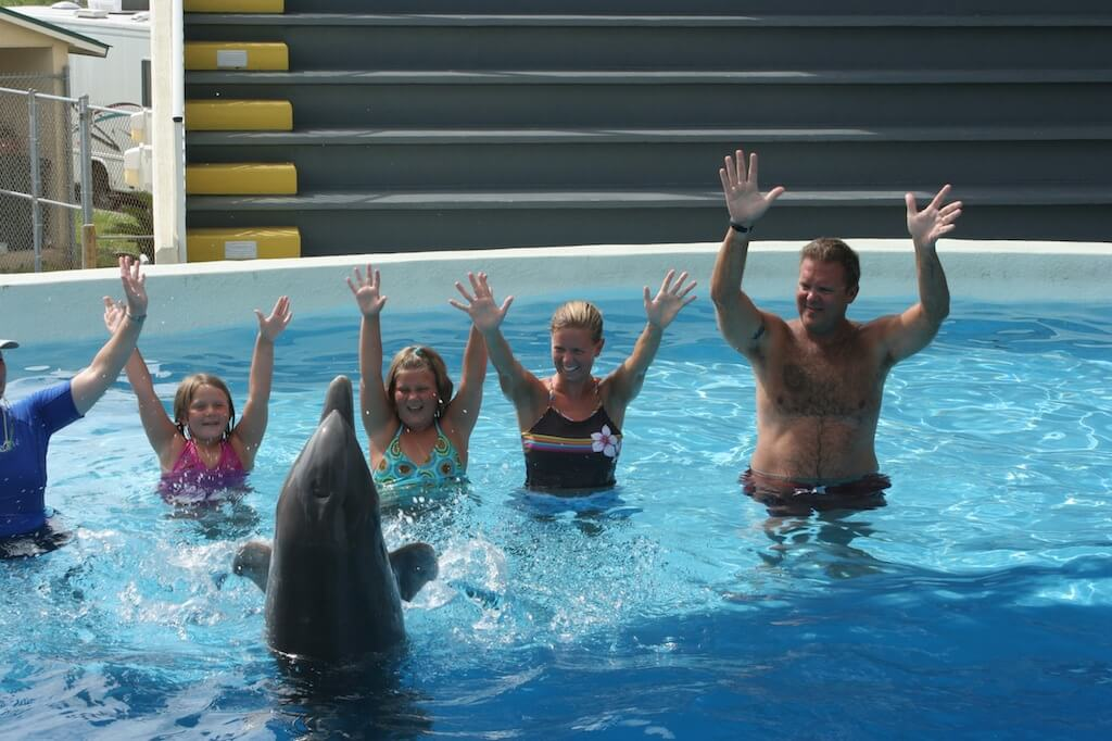 Swimming With Dolphins Panama City Beach 6 Gulf World Marine Park