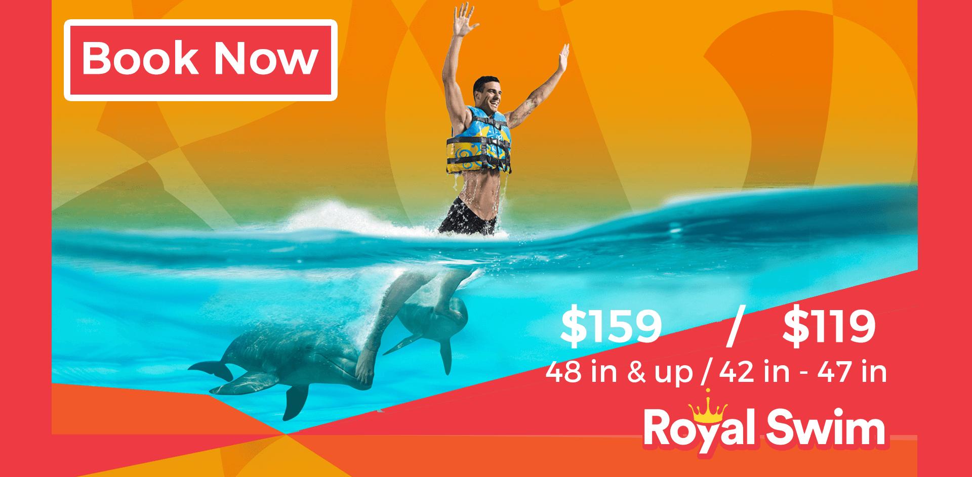 royal swim slider – slider